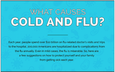 How to Make it Through The Cold & Flu Season